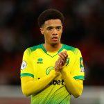 Norwich Tolak Tawaran Liverpool Untuk Rekrut Jamal Lewis